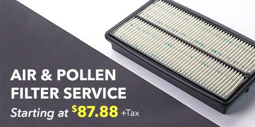 Air & Pollen Filter Service